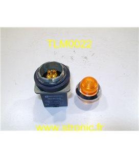 VOYANT LUMINEUX DEL XB2MV1245