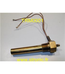 THERMOSWITCH             17101