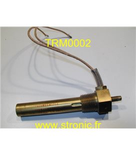 THERMOSWITCH             17100