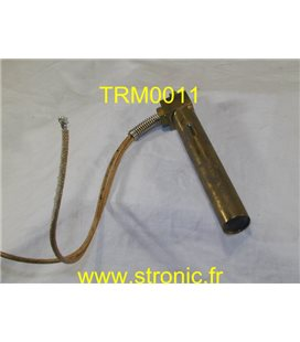 THERMOSWITCH             17200